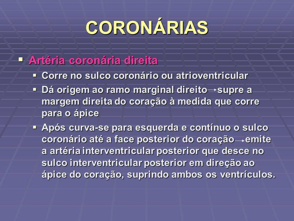 CORONÁRIAS Artéria coronária direita