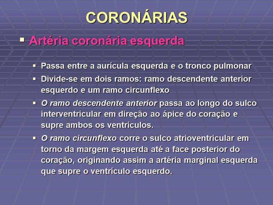 CORONÁRIAS Artéria coronária esquerda
