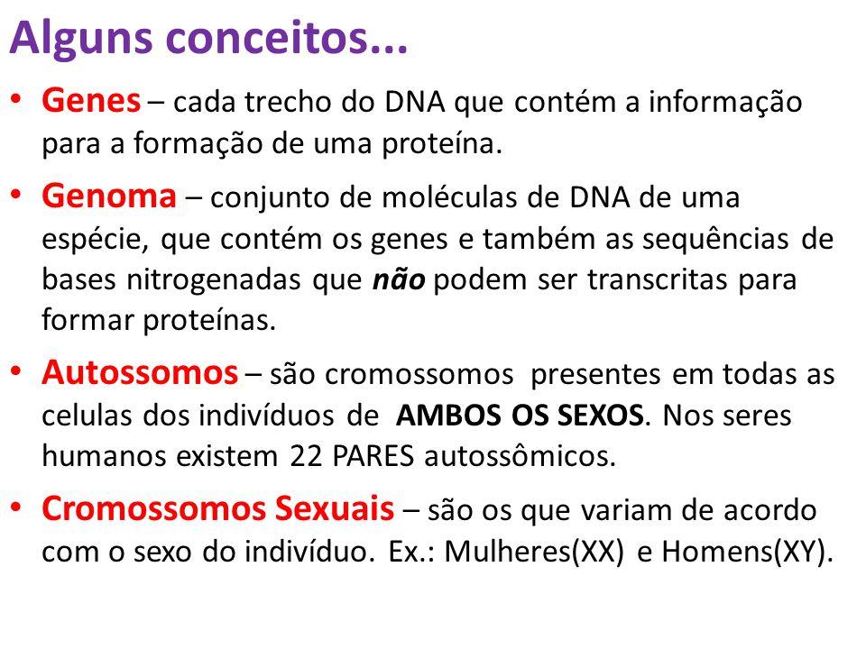 Alguns conceitos... Genes – cada trecho do DNA que contém a informação para a formação de uma proteína.