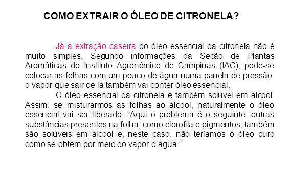 COMO EXTRAIR O ÓLEO DE CITRONELA