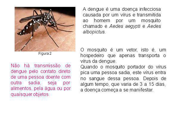 A dengue é uma doença infecciosa causada por um vírus e transmitida ao homem por um mosquito chamado e Aedes aegypti e Aedes albopictus.