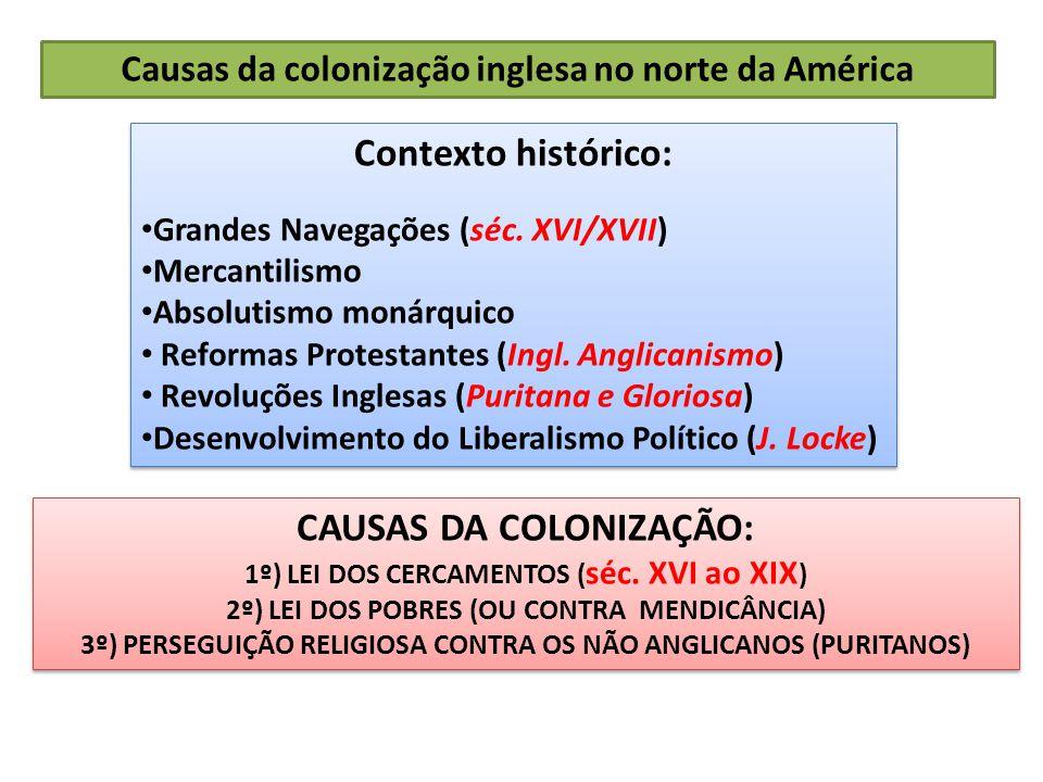 Contexto histórico: CAUSAS DA COLONIZAÇÃO: