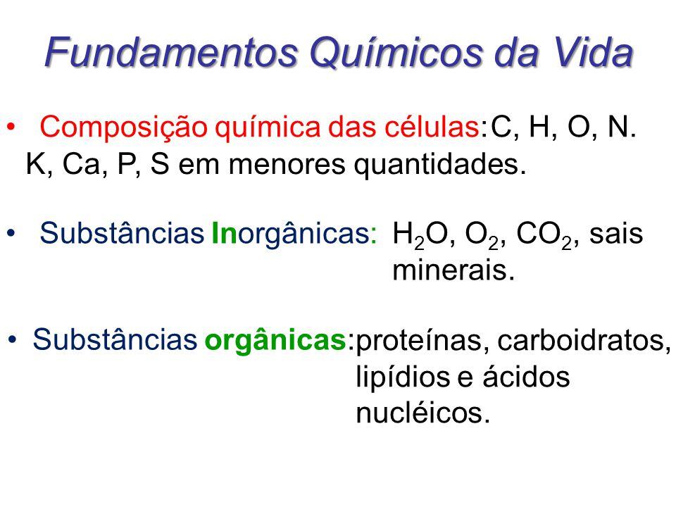 Fundamentos Químicos da Vida