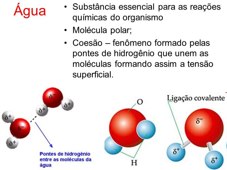 Água Substância essencial para as reações químicas do organismo
