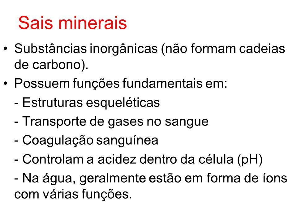 Sais minerais Substâncias inorgânicas (não formam cadeias de carbono).