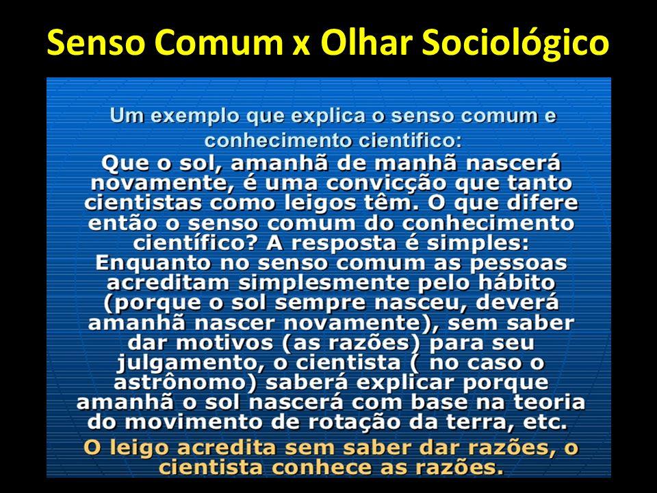 Senso Comum x Olhar Sociológico