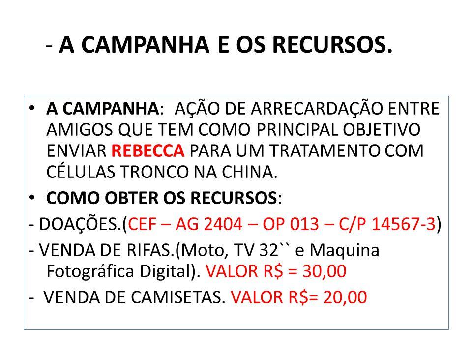 - A CAMPANHA E OS RECURSOS.