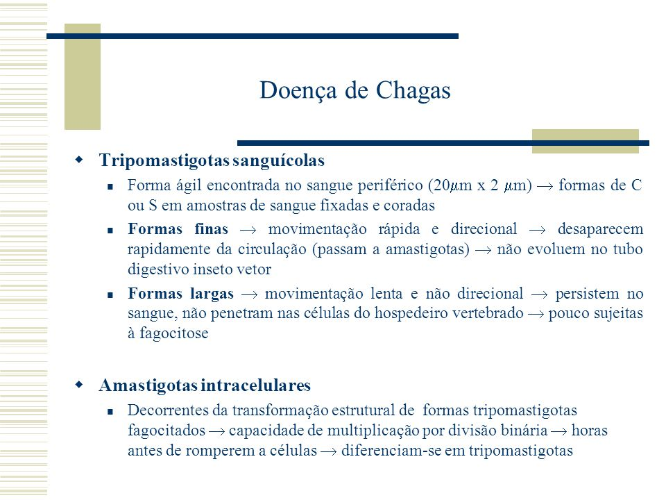 Doença de Chagas Tripomastigotas sanguícolas