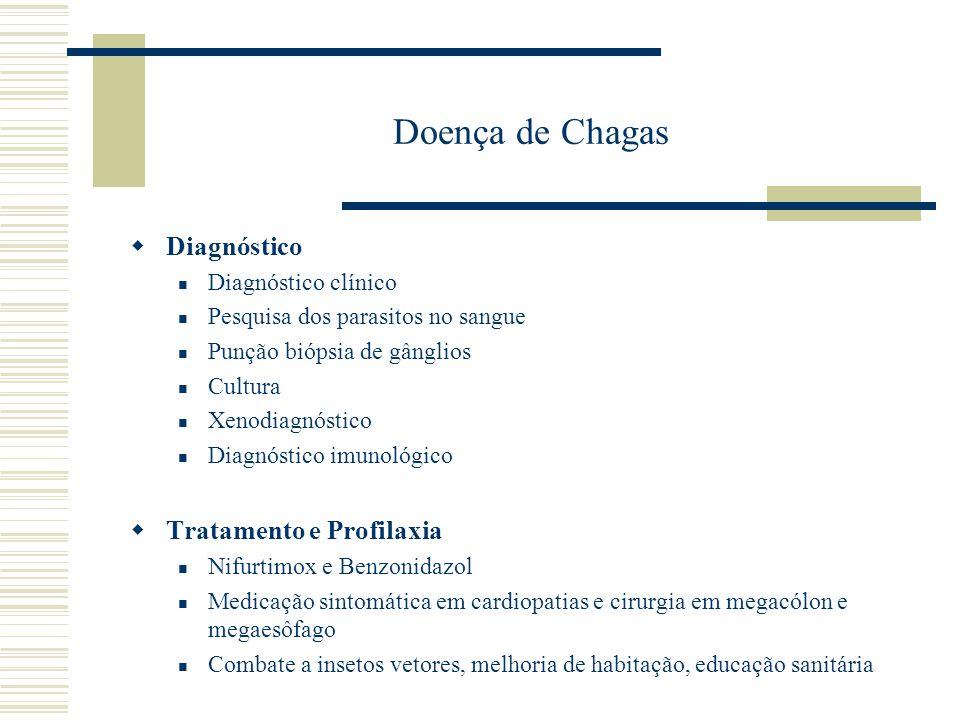 Doença de Chagas Diagnóstico Tratamento e Profilaxia