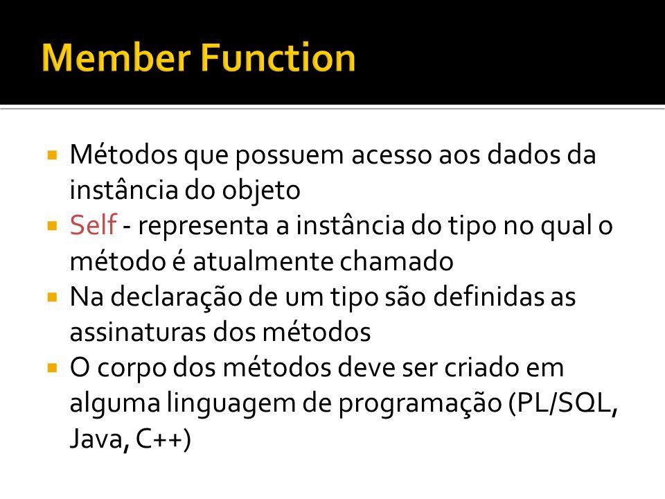 Member Function Métodos que possuem acesso aos dados da instância do objeto.