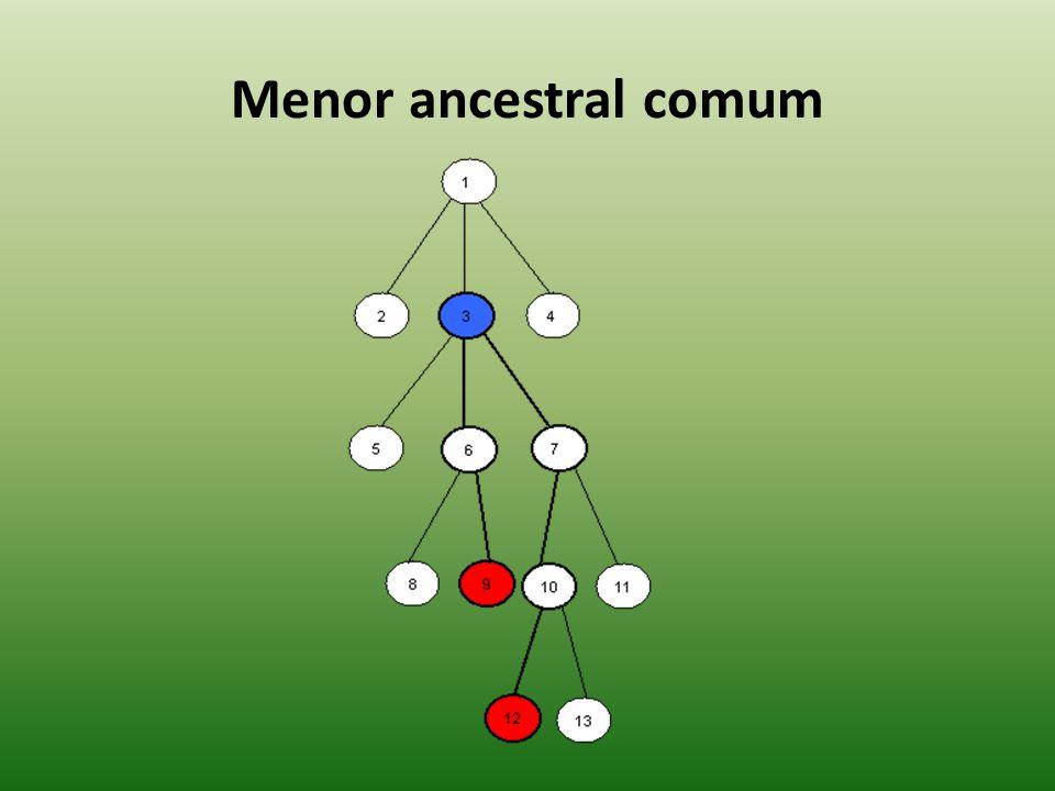 Menor ancestral comum