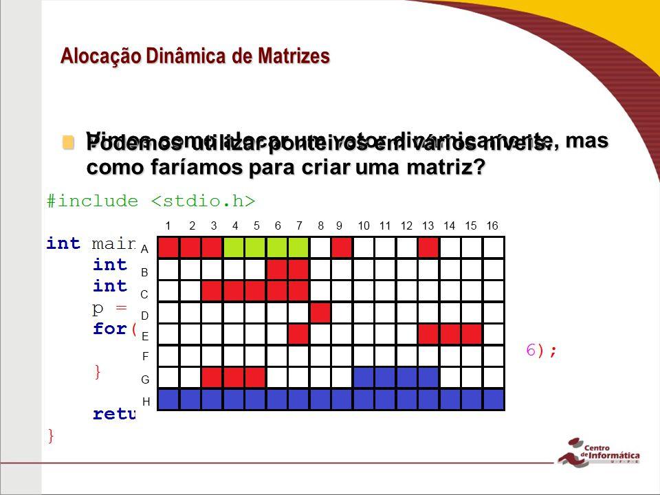Alocação Dinâmica de Matrizes