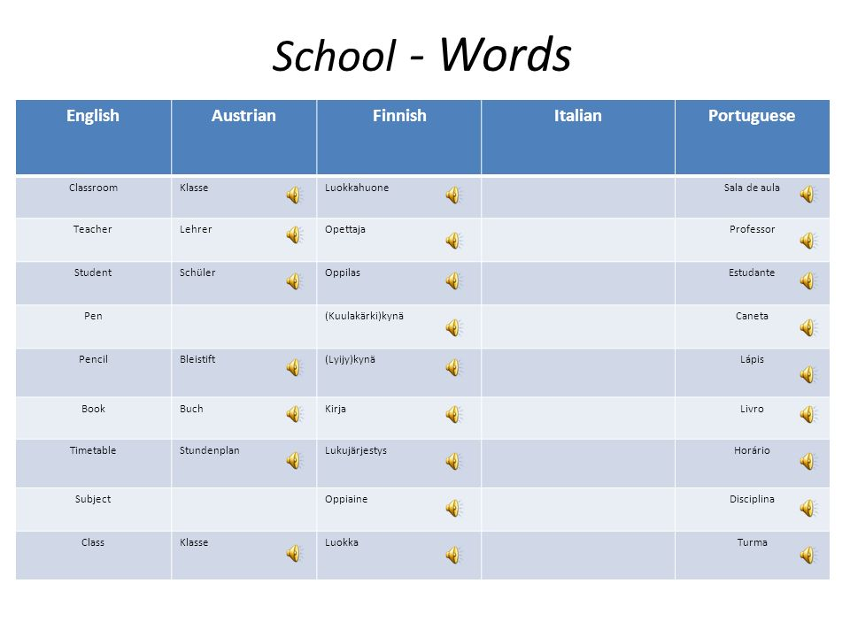 School - Words English Austrian Finnish Italian Portuguese Classroom