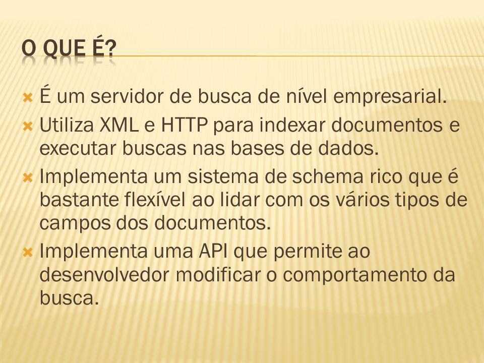 O que é É um servidor de busca de nível empresarial.