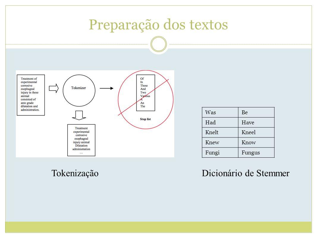 Preparação dos textos Tokenização Dicionário de Stemmer Was Be Had