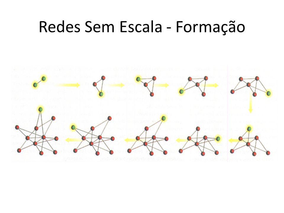 Redes Sem Escala - Formação