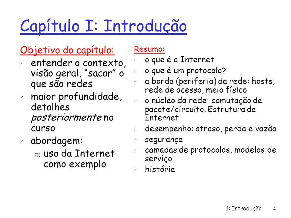 Capítulo I: Introdução