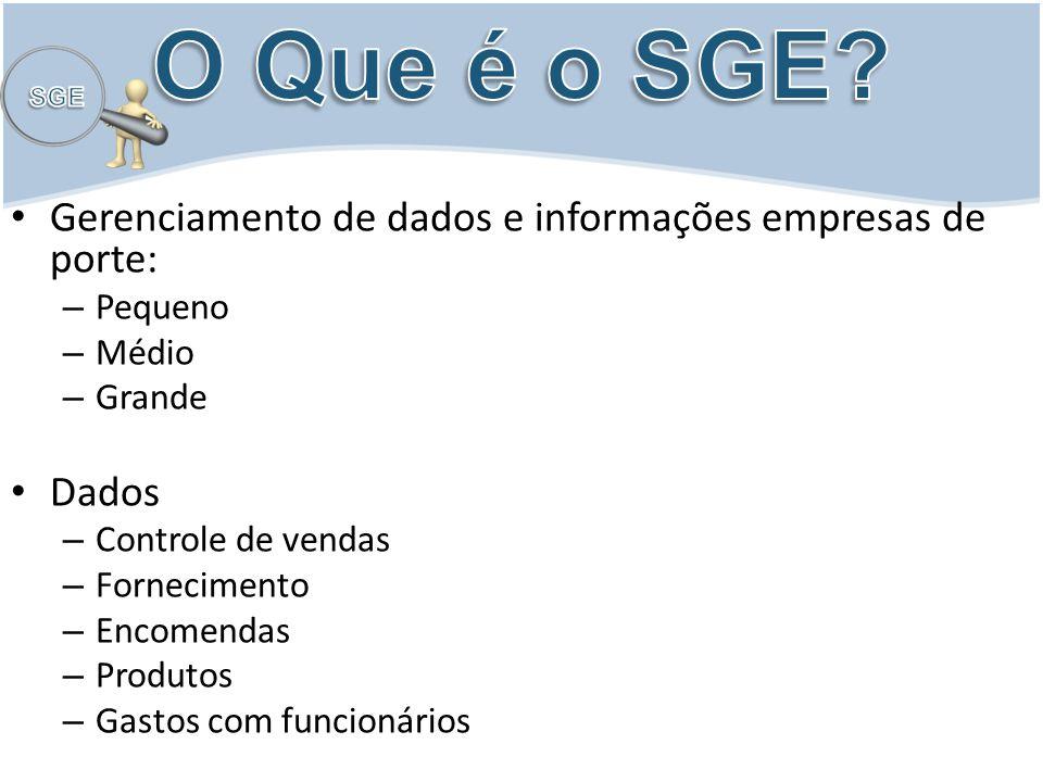 O Que é o SGE Gerenciamento de dados e informações empresas de porte: