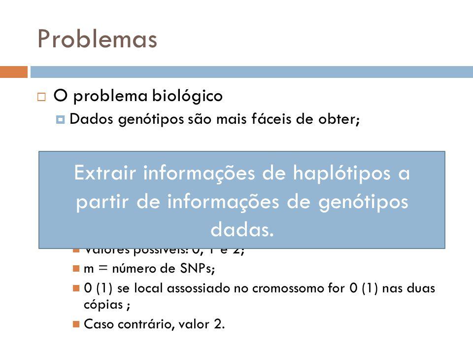 Problemas O problema biológico. Dados genótipos são mais fáceis de obter; Dados haplótipos são mais importantes;