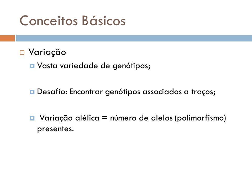 Conceitos Básicos Variação Vasta variedade de genótipos;