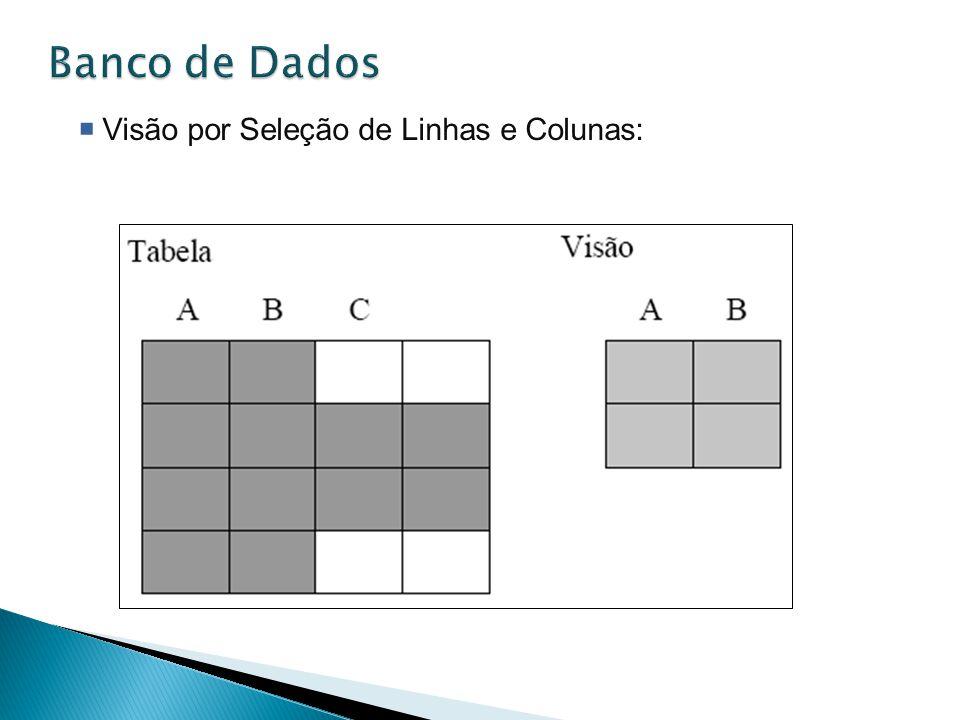 Banco de Dados Visão por Seleção de Linhas e Colunas: