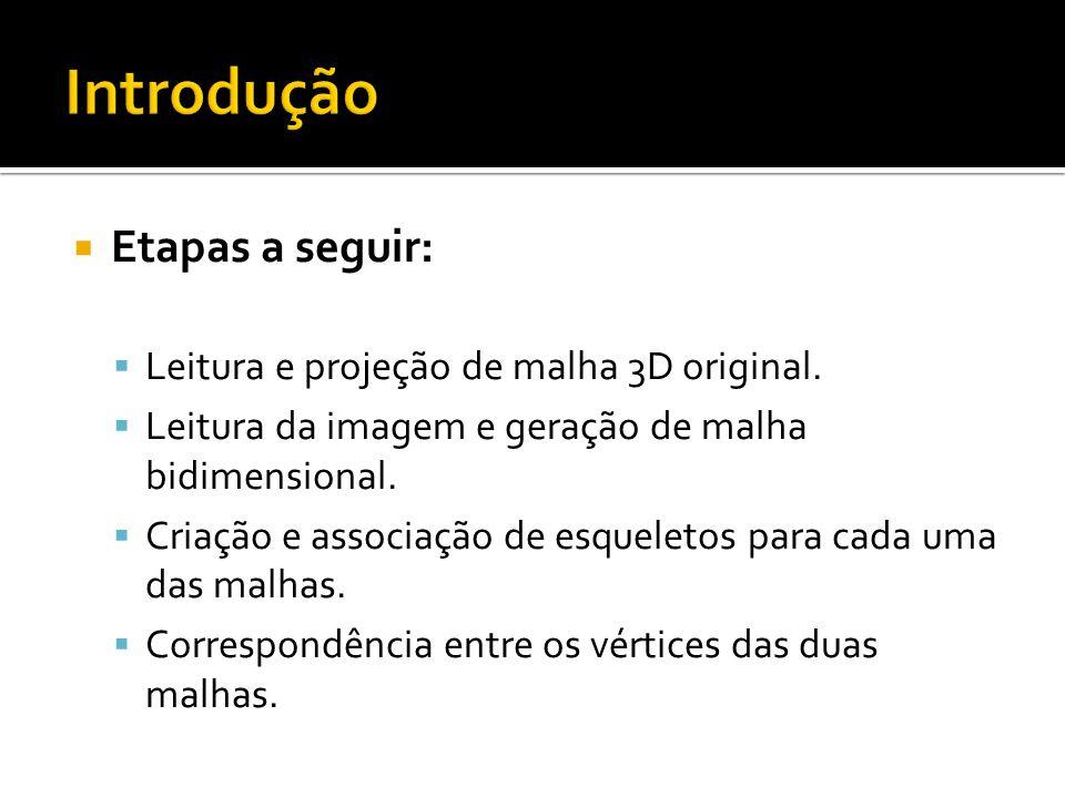 Introdução Etapas a seguir: Leitura e projeção de malha 3D original.