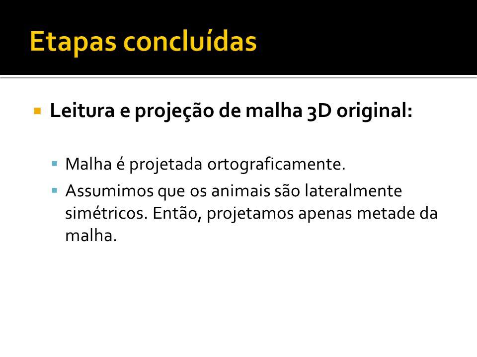 Etapas concluídas Leitura e projeção de malha 3D original: