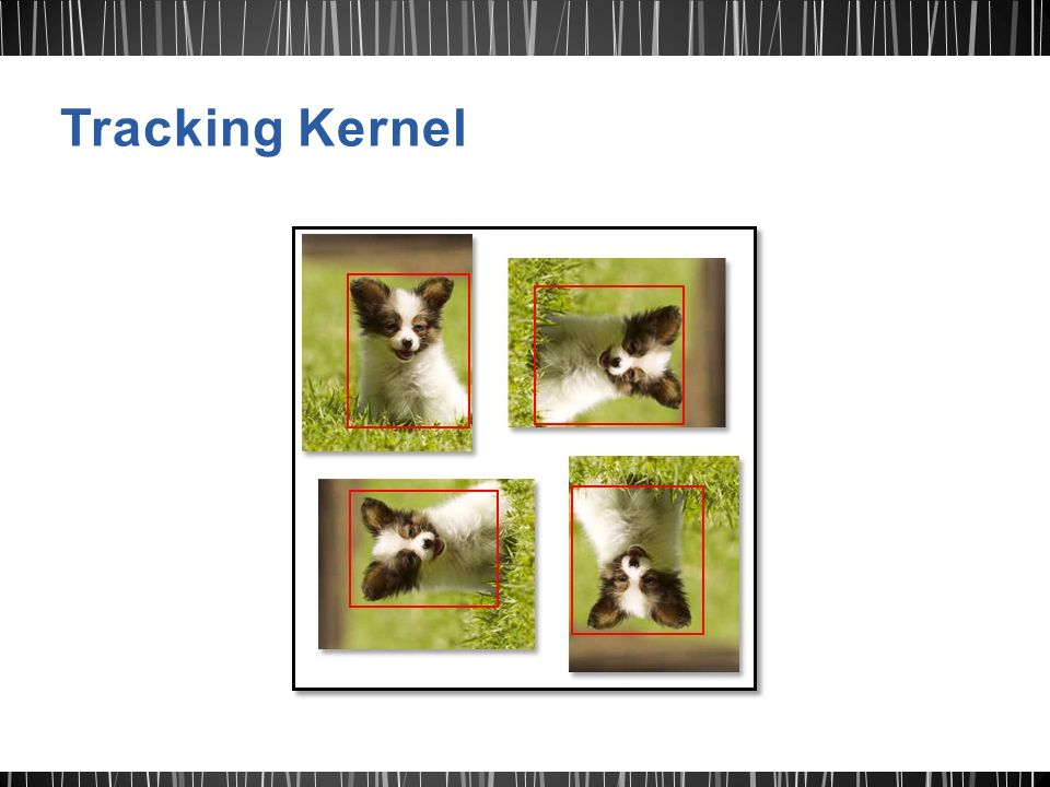 Tracking Kernel