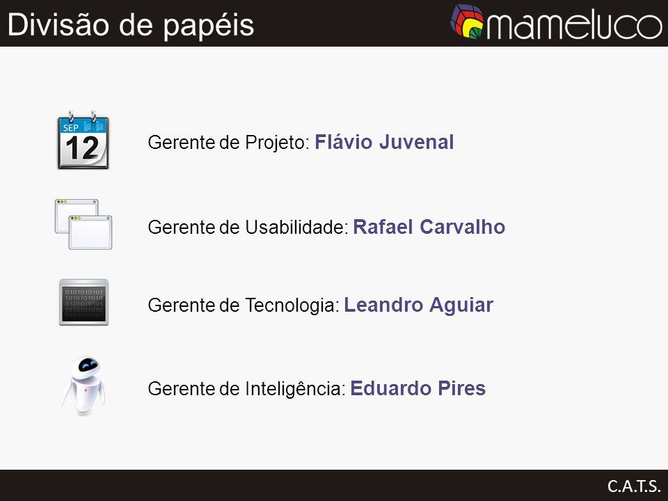 Divisão de papéis Gerente de Projeto: Flávio Juvenal