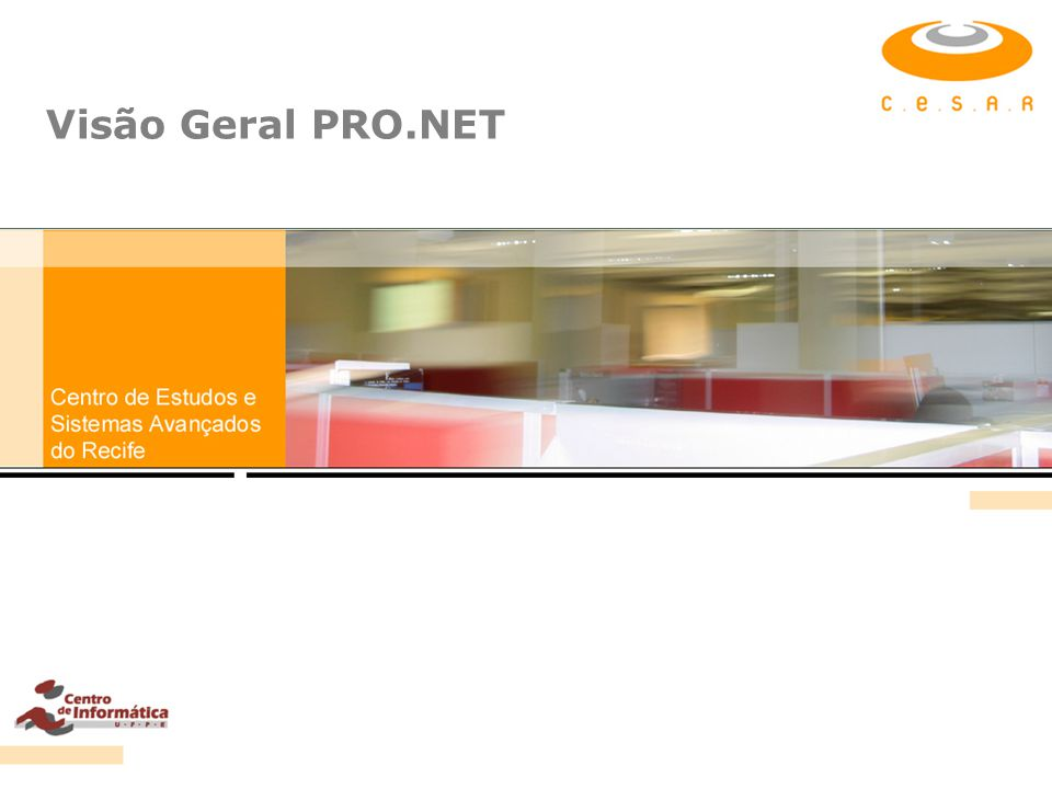 Visão Geral PRO.NET