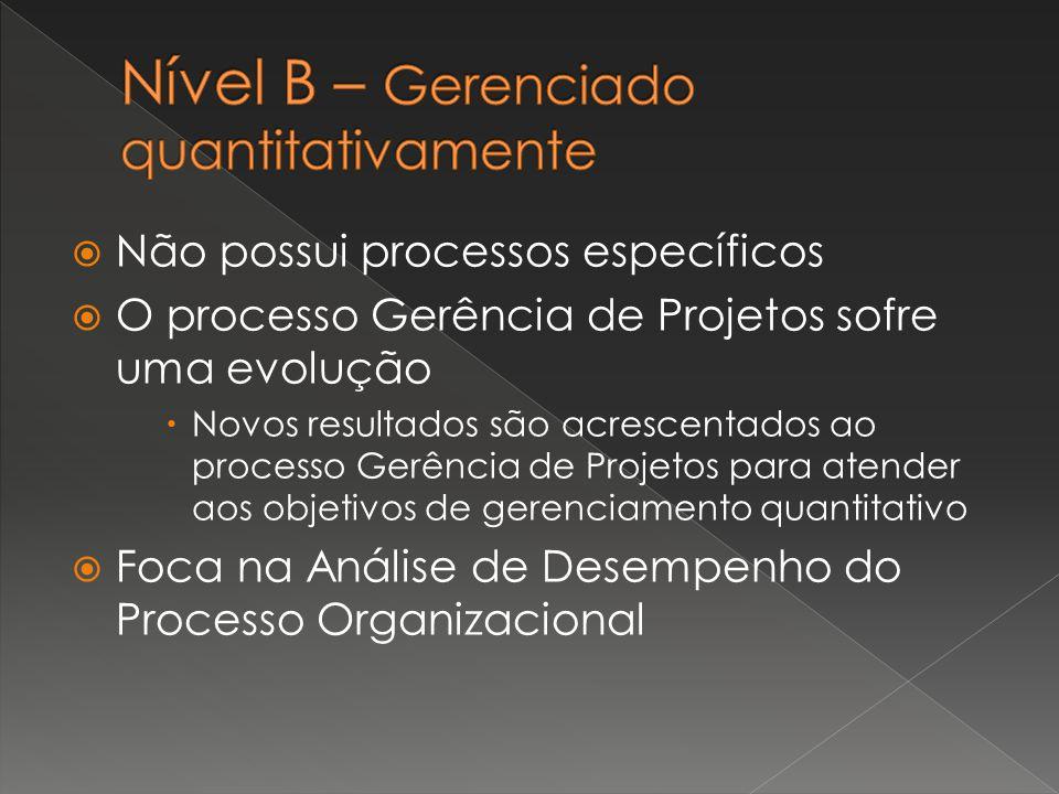 Nível B – Gerenciado quantitativamente