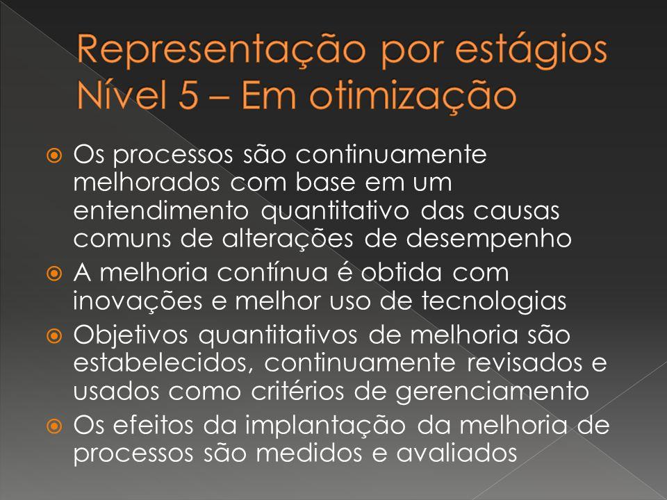 Representação por estágios Nível 5 – Em otimização