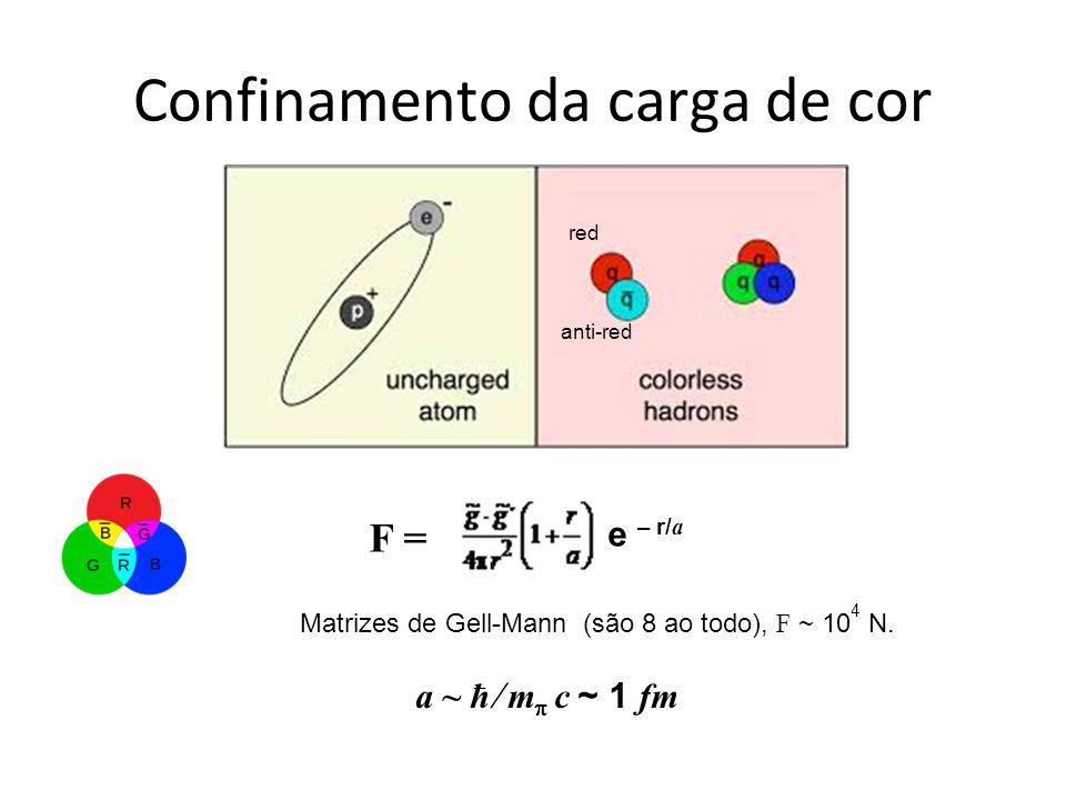 Confinamento da carga de cor