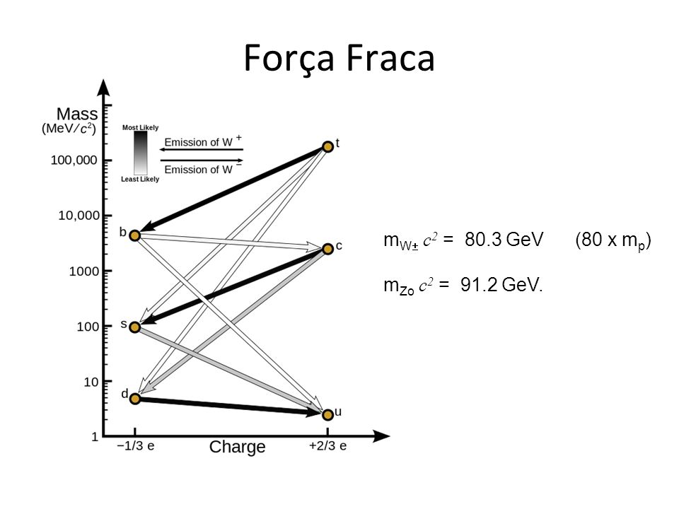 Força Fraca mW c2 = 80.3 GeV (80 x mp) mZo c2 = 91.2 GeV.