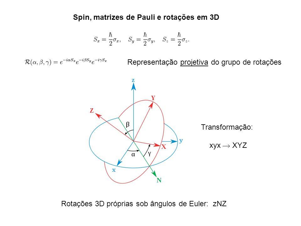 Spin, matrizes de Pauli e rotações em 3D