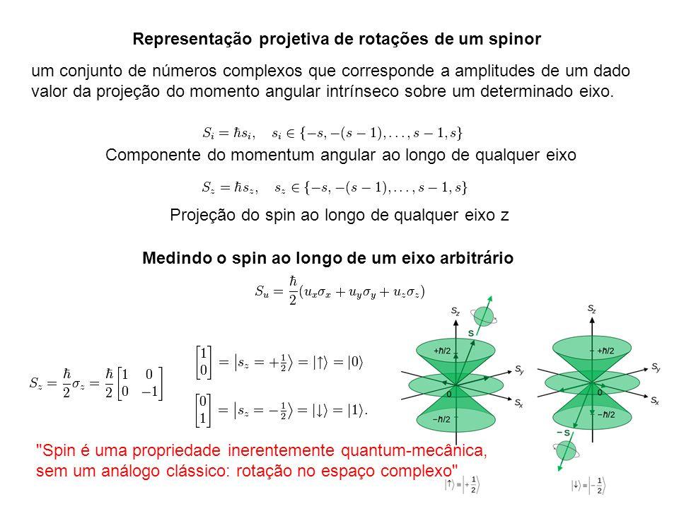 Representação projetiva de rotações de um spinor