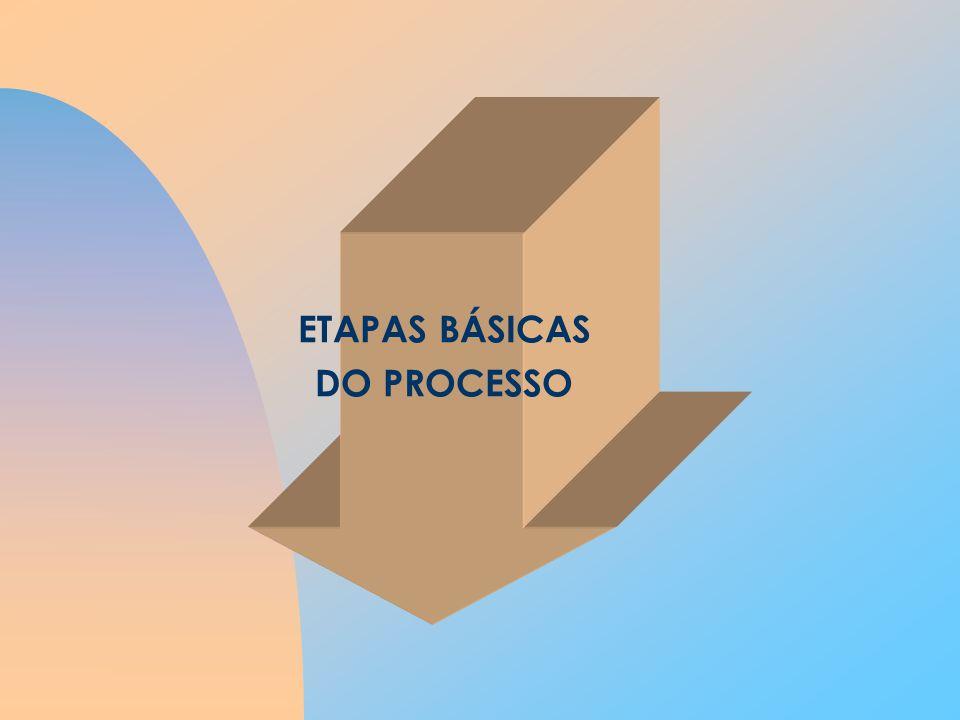 ETAPAS BÁSICAS DO PROCESSO