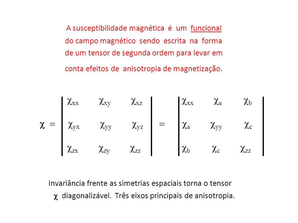 A susceptibilidade magnética é um funcional