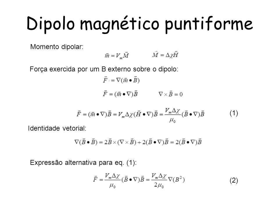 Dipolo magnético puntiforme