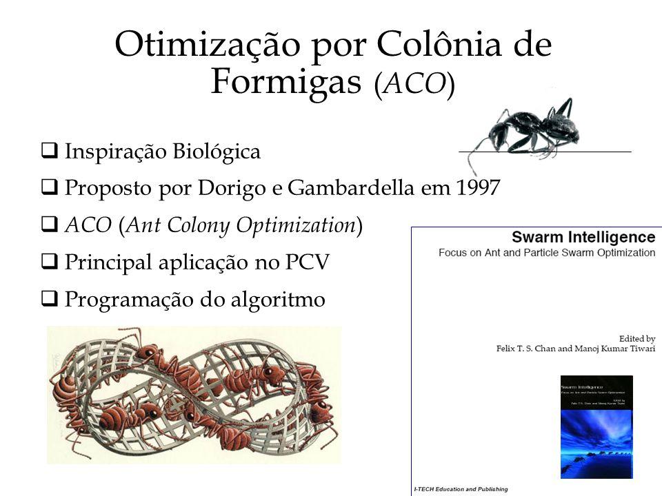 Otimização por Colônia de Formigas (ACO)