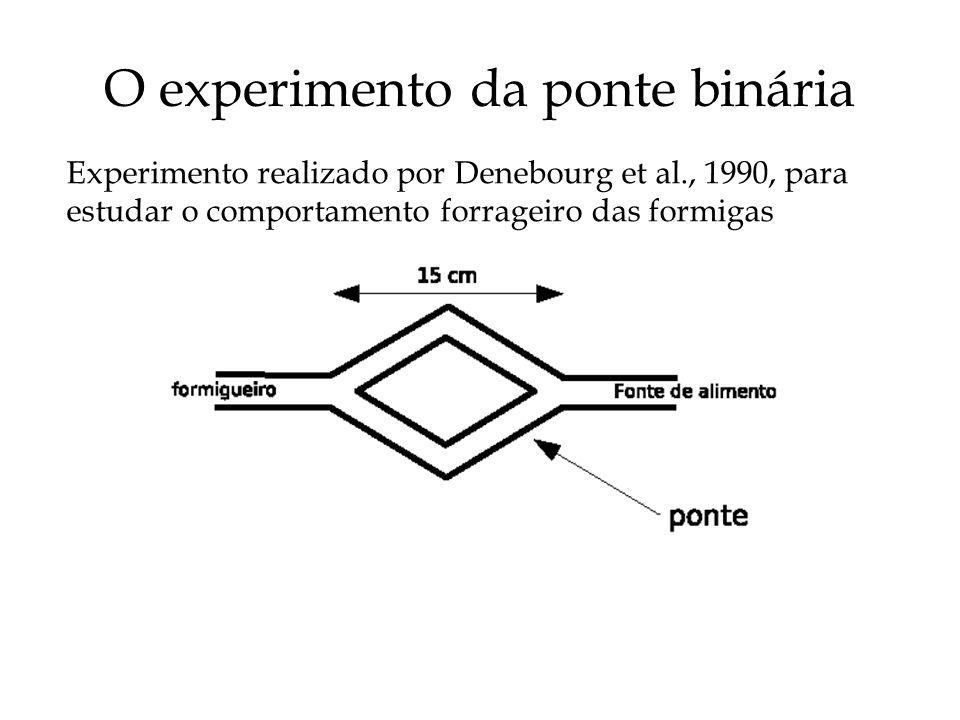 O experimento da ponte binária
