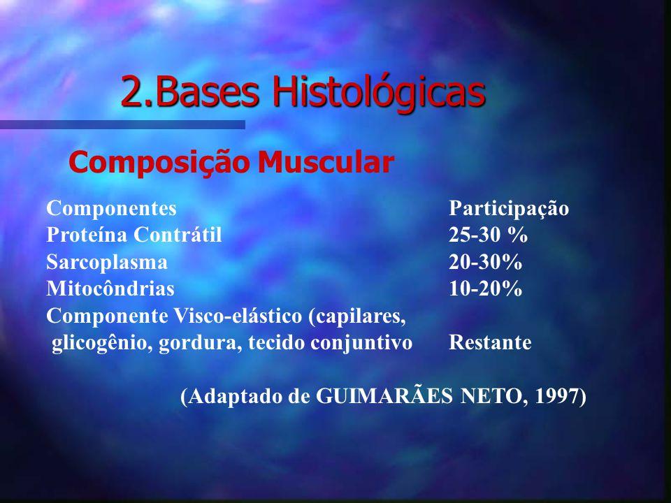 2.Bases Histológicas Composição Muscular Componentes Participação