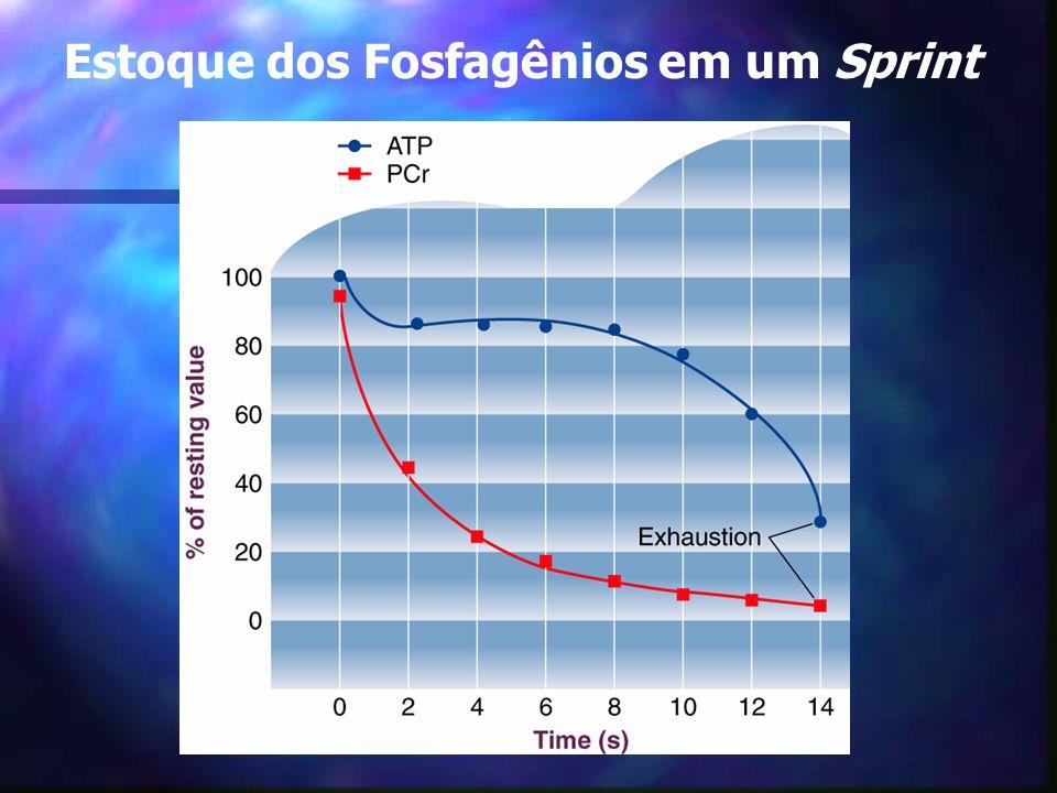 Estoque dos Fosfagênios em um Sprint