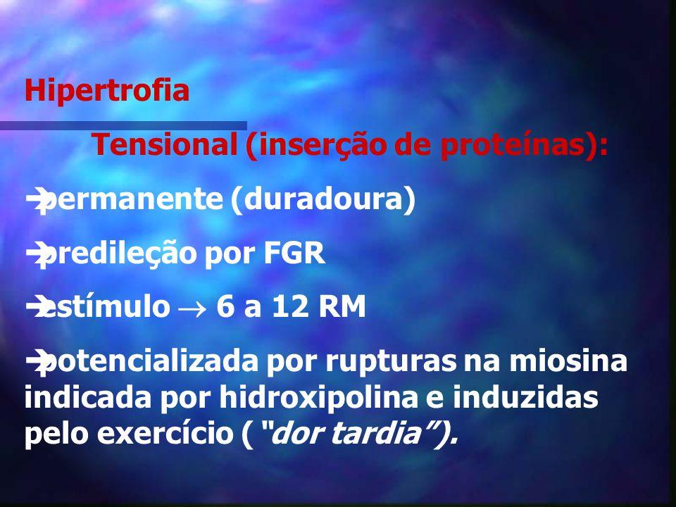 Hipertrofia Tensional (inserção de proteínas): permanente (duradoura) predileção por FGR. estímulo  6 a 12 RM.
