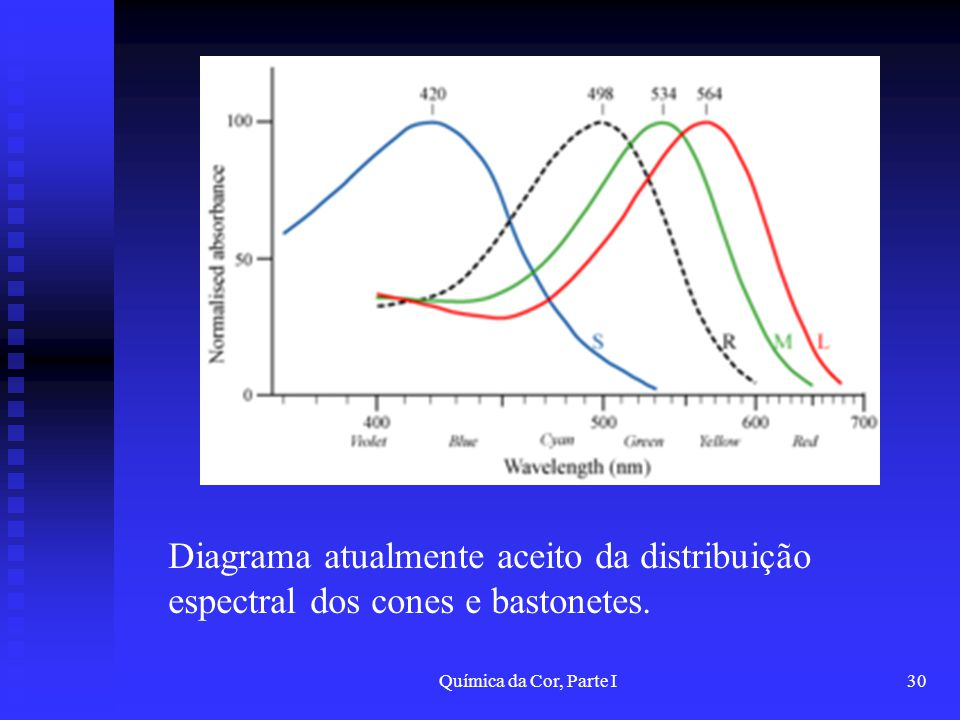 Diagrama atualmente aceito da distribuição espectral dos cones e bastonetes.