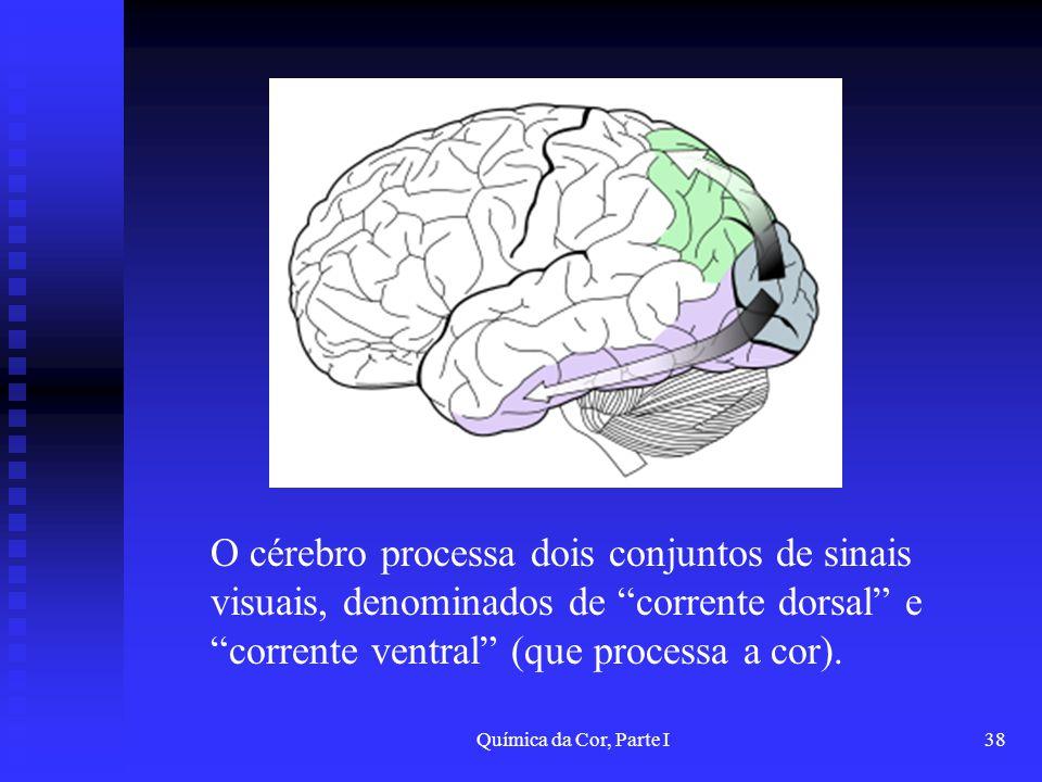 O cérebro processa dois conjuntos de sinais visuais, denominados de corrente dorsal e corrente ventral (que processa a cor).