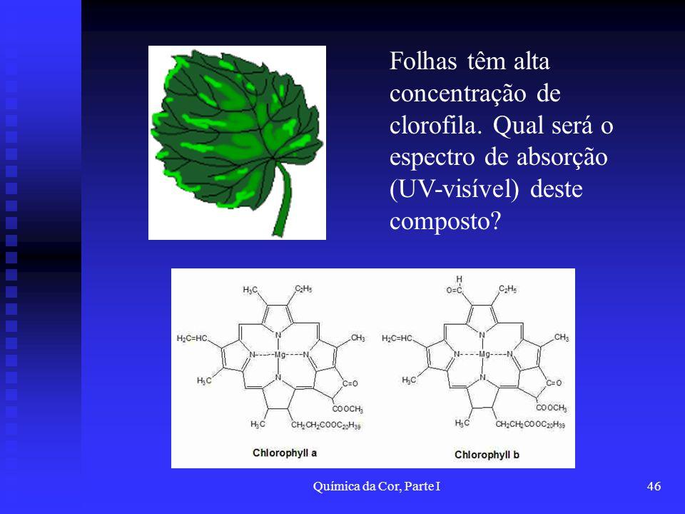 Folhas têm alta concentração de clorofila