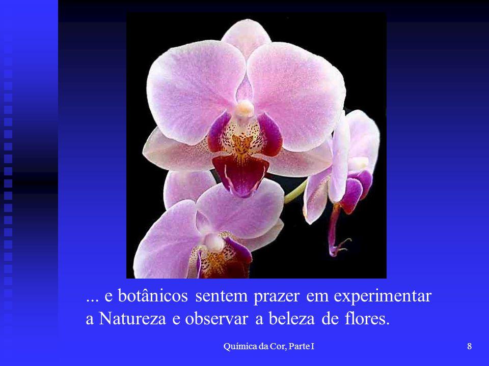 ... e botânicos sentem prazer em experimentar a Natureza e observar a beleza de flores.