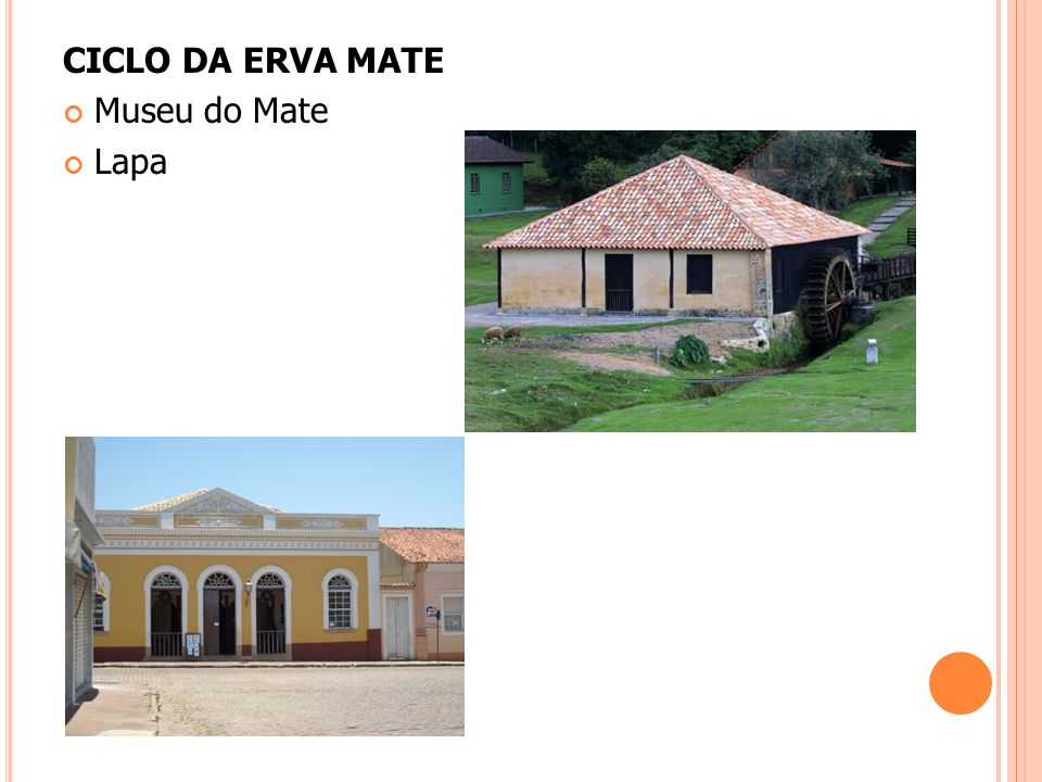 CICLO DA ERVA MATE Museu do Mate Lapa