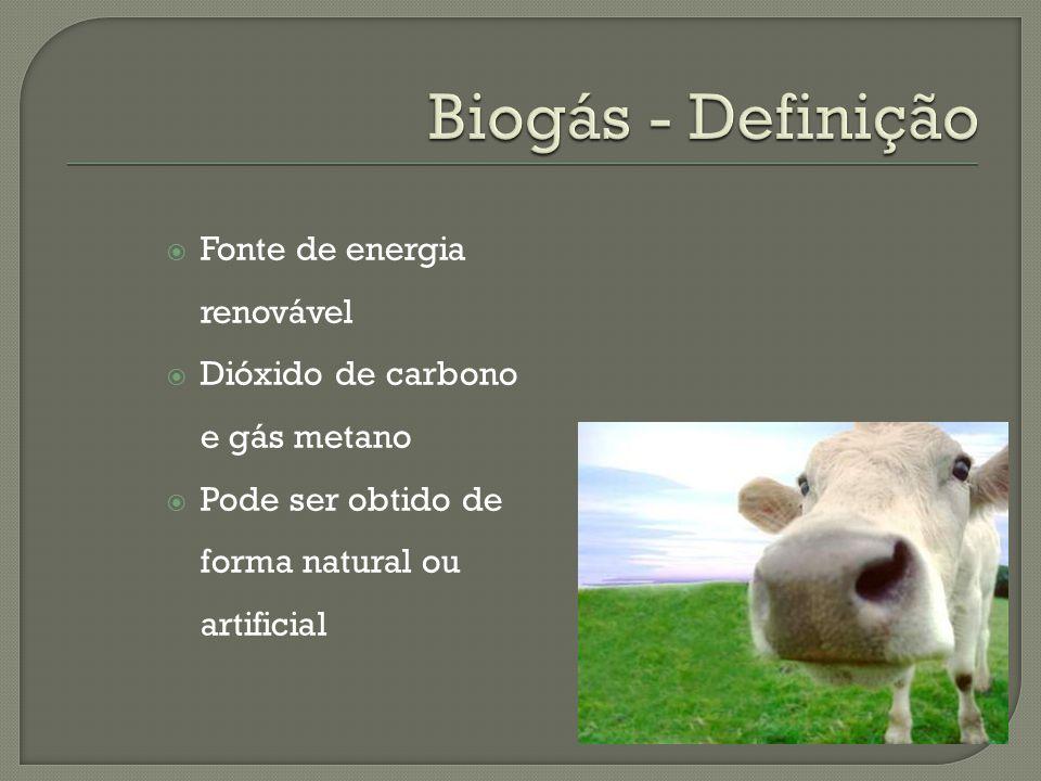 Biogás - Definição Fonte de energia renovável